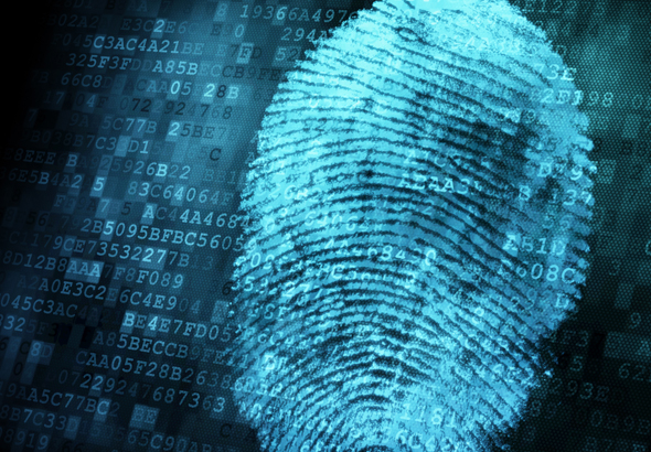Fingerprint - Financial Investigations - Research - Law Enforcement